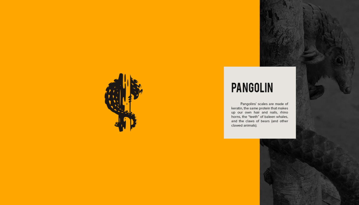 Les logos minimalistes d'animaux en voie de disparition 8