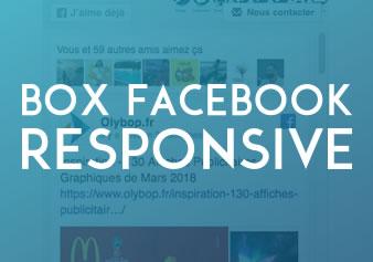 Responsive : Comment rendre la Box Facebook Responsive 1