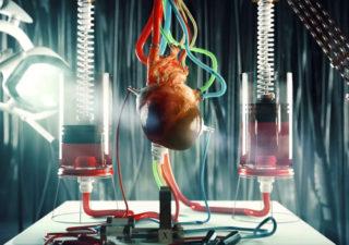 [WOW] Machine de Rube Goldberg En 3D sur le Corps Humain 1