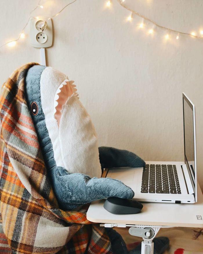 Quand la nouvelle peluche requin Ikea Blåhaj devient Viral 11