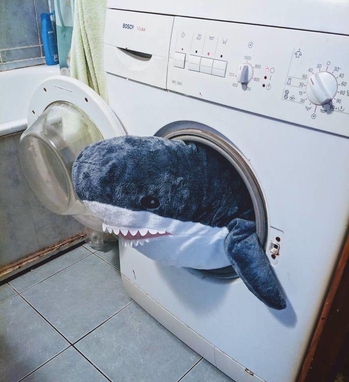 Quand la nouvelle peluche requin Ikea Blåhaj devient Viral 21