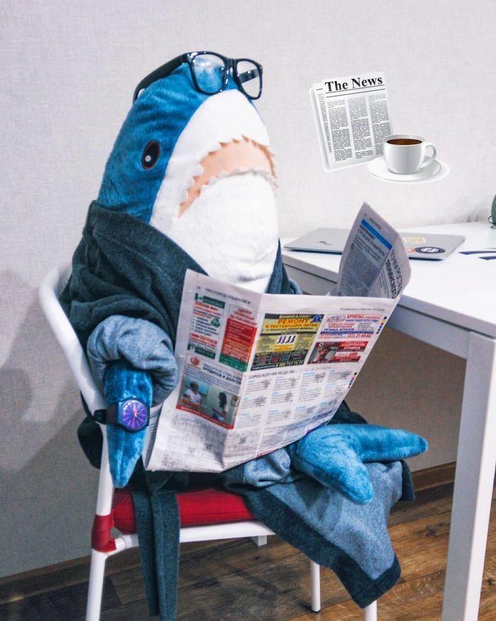 Quand la nouvelle peluche requin Ikea Blåhaj devient Viral 6