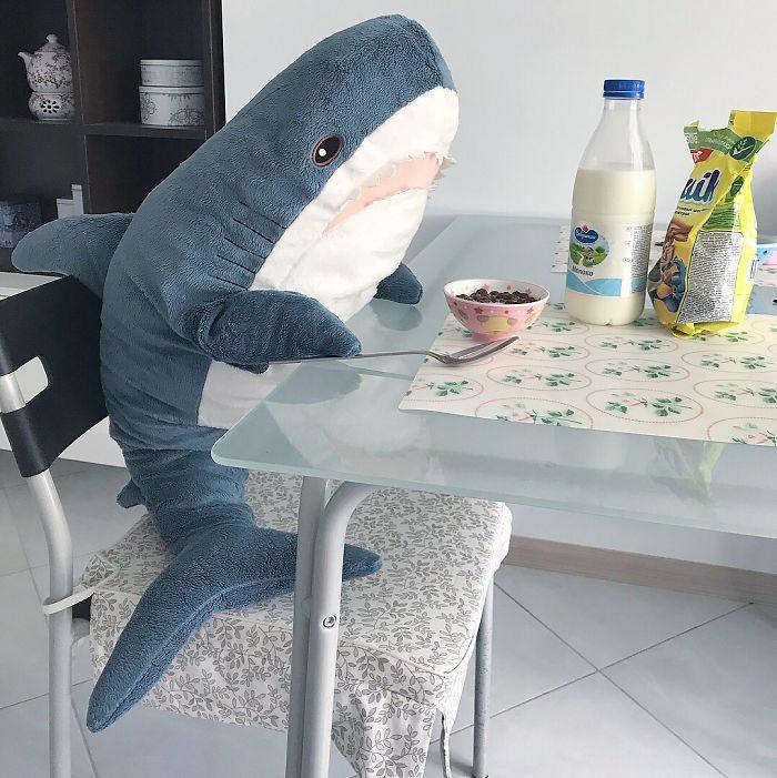 Quand la nouvelle peluche requin Ikea Blåhaj devient Viral 9