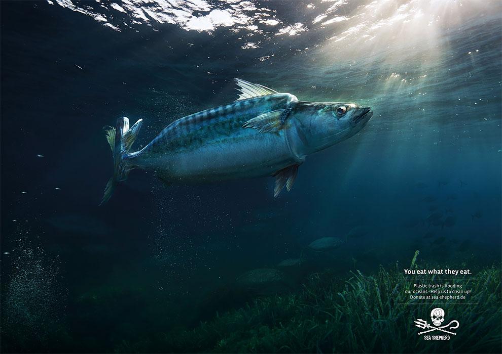 Court métrage fascinant où les animaux des océans sont mi-animaux mi-pollution 4