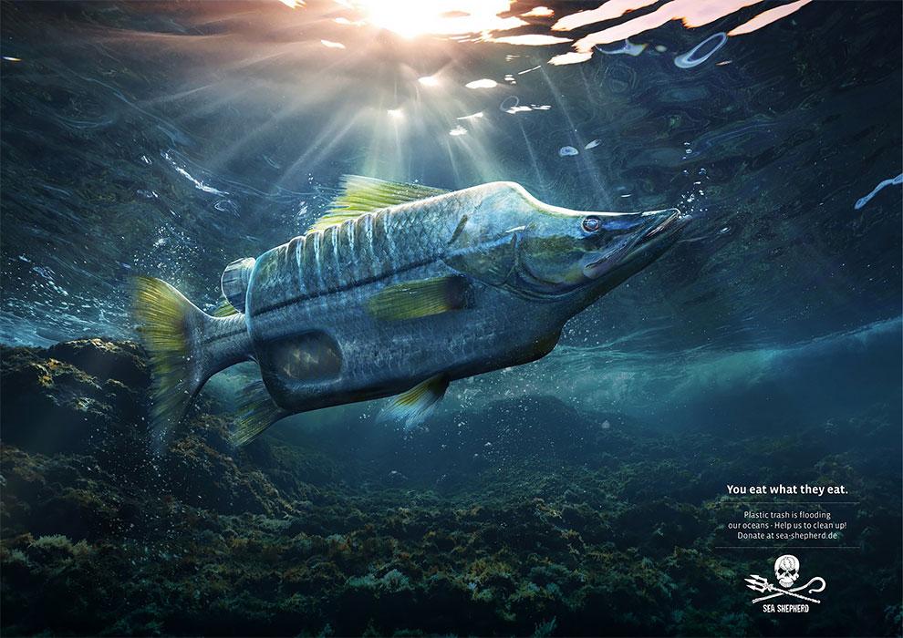 Court métrage fascinant où les animaux des océans sont mi-animaux mi-pollution 5
