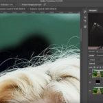 L'outils Gomme Photoshop pour supprimer un arrière plan proprement