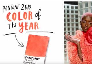 PANTONE 2019 - Living Corail 1