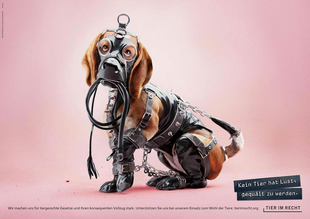 Inspiration – 100 publicités créatives depuis janvier 2019 28