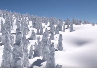 Découvrir l'hiver au Japon en 8K 1