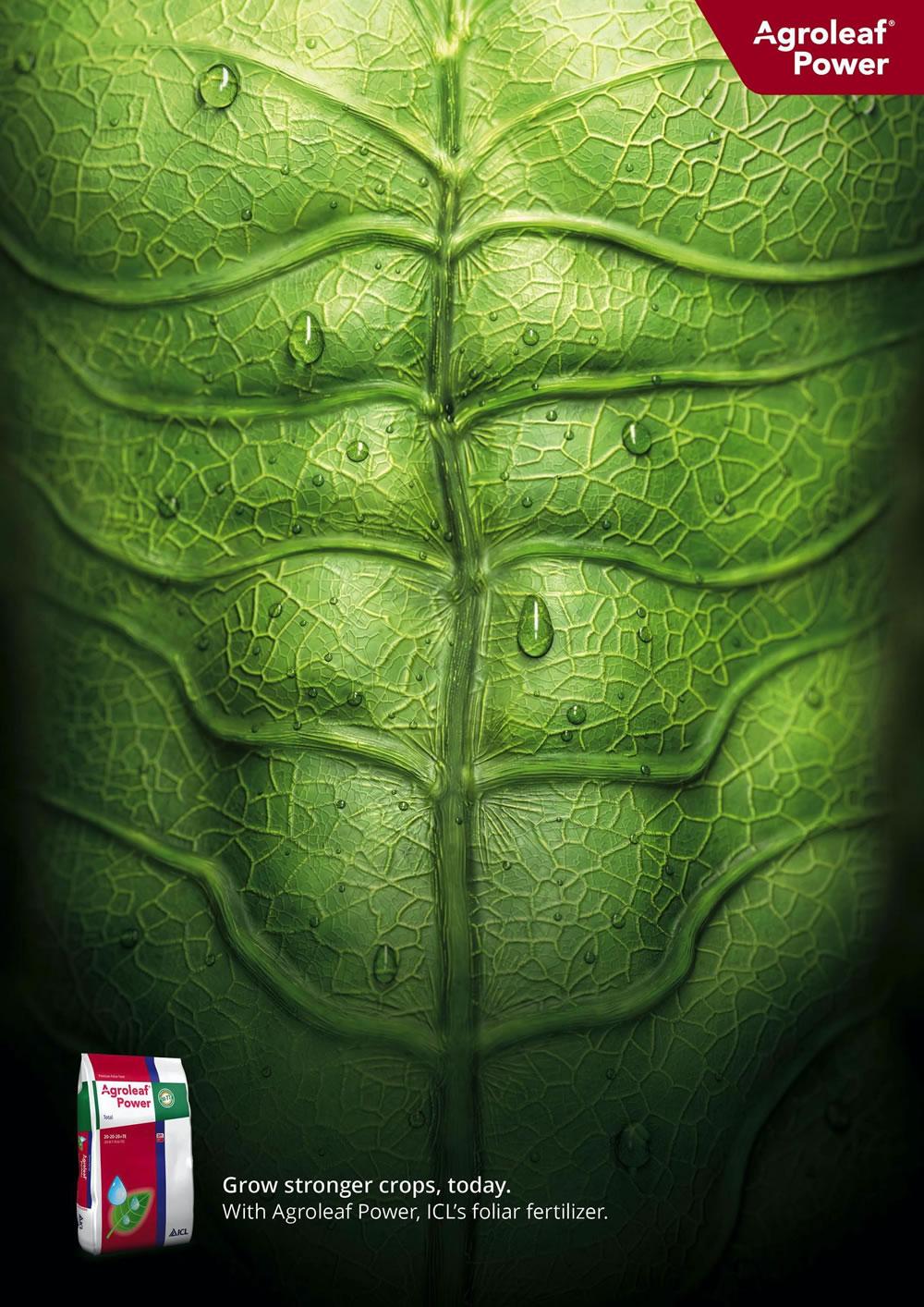 Inspiration d'affiche publicitaires du mois de Mai 2020 5