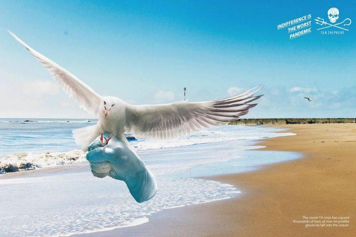 Inspiration d'affiche publicitaires du mois de Juin 2020 39