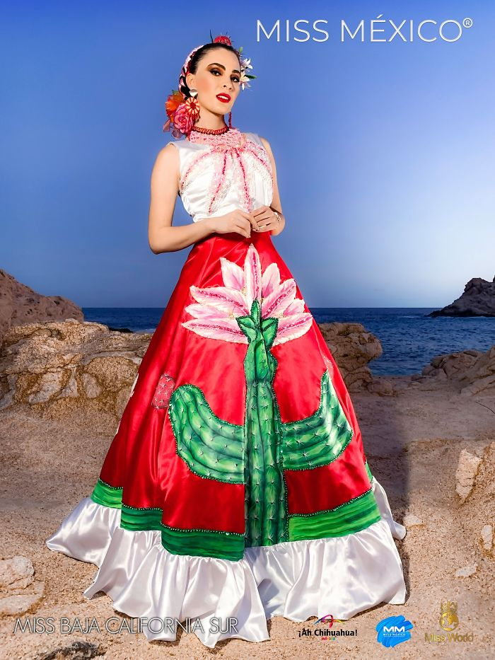 Les superbes costumes des miss mexico 2020 16