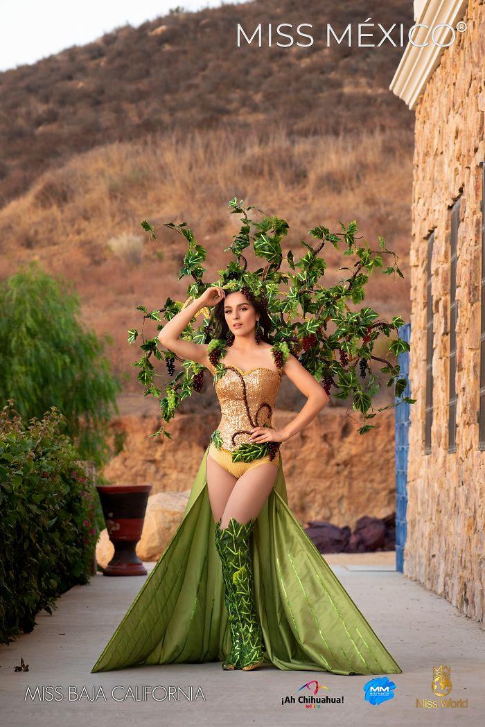 Les superbes costumes des miss mexico 2020 21