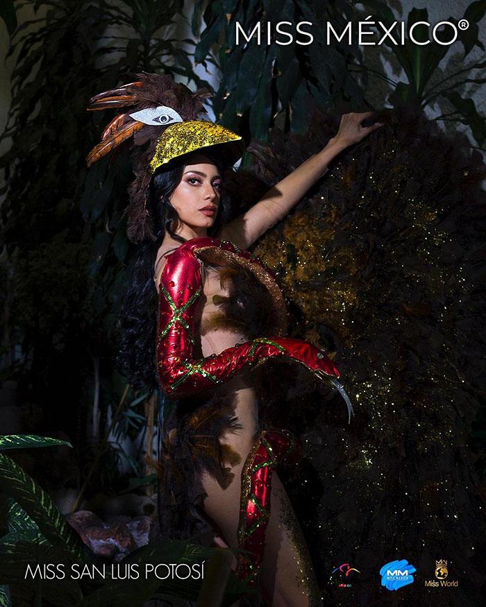 Les superbes costumes des miss mexico 2020 23