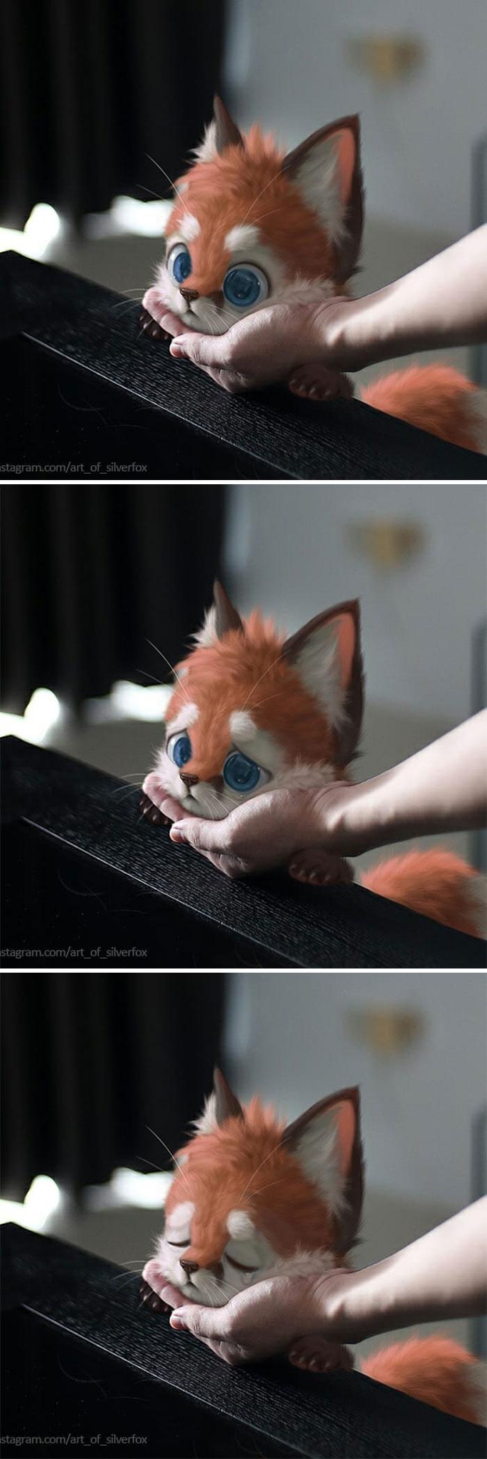 Illustrations du renard le plus mignon du monde 12