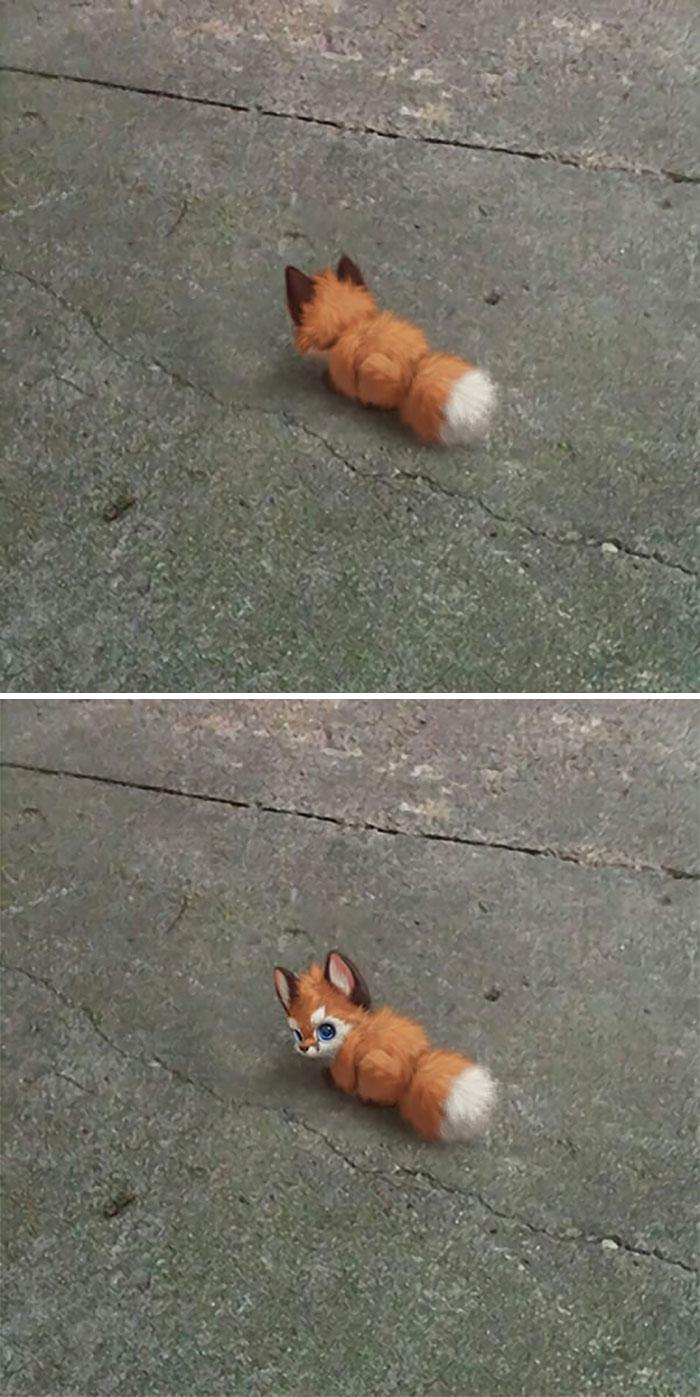 Illustrations du renard le plus mignon du monde 14