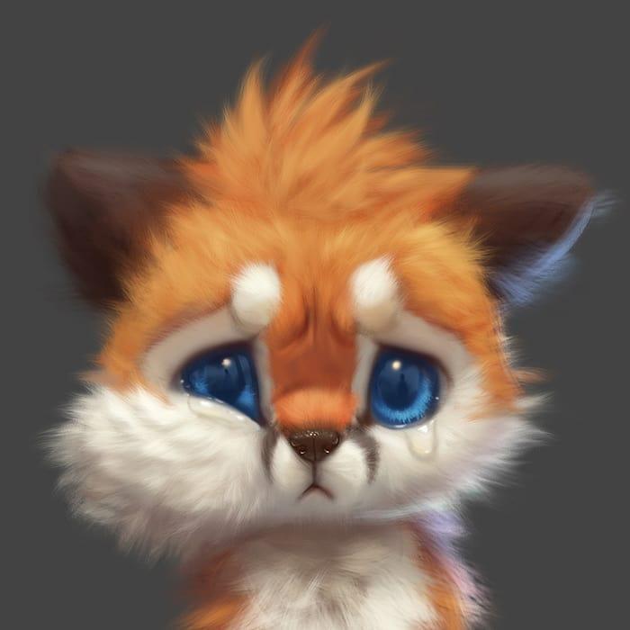 Illustrations du renard le plus mignon du monde 16