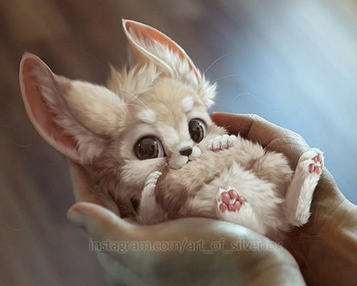Illustrations du renard le plus mignon du monde 17