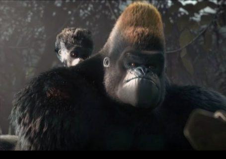 Liyoki Court métrage ESMA touchant sur des Gorilles 3