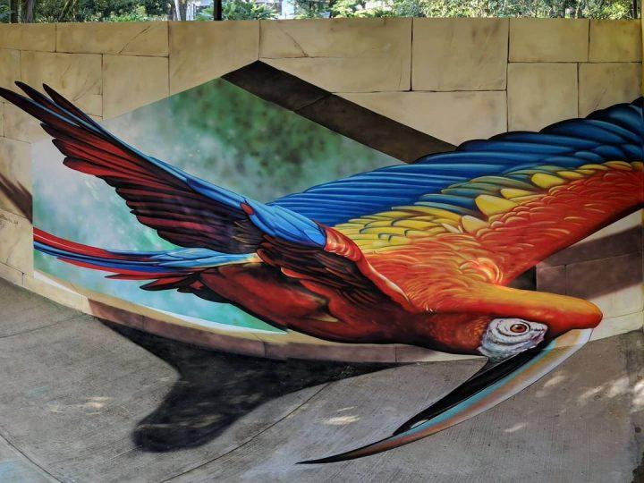 Du streetart qui rend la rue magnifique 10