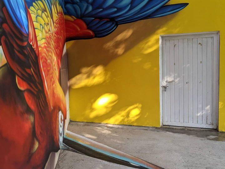Du streetart qui rend la rue magnifique 11