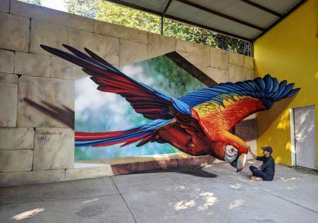 Du streetart qui rend la rue magnifique 7