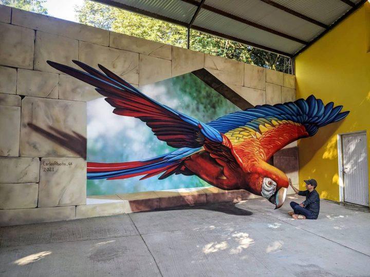 Du streetart qui rend la rue magnifique 12