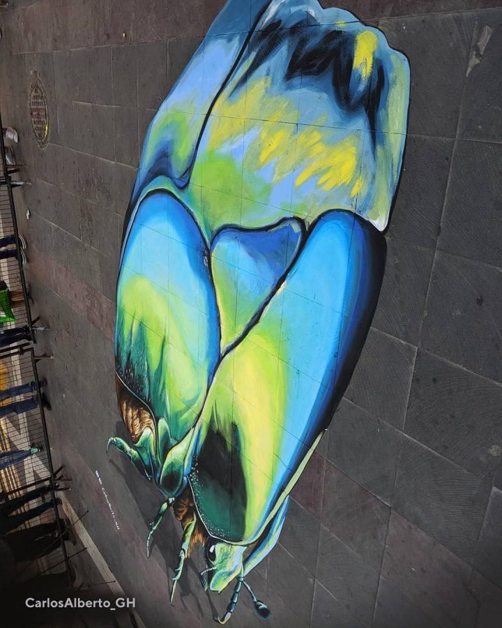 Du streetart qui rend la rue magnifique 34