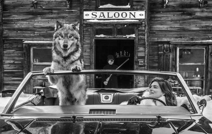 Les superbes photos noir & blanc de David Yarrow 3