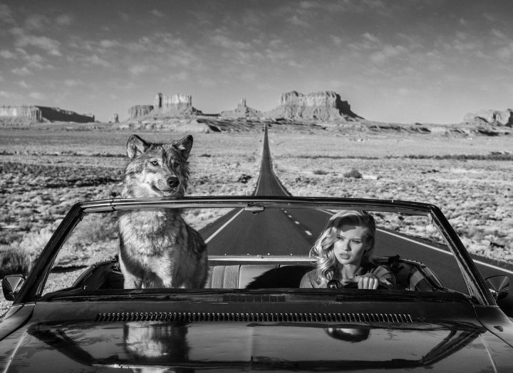Les superbes photos noir & blanc de David Yarrow 24
