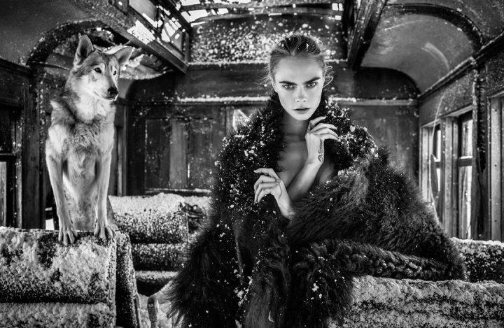 Les superbes photos noir & blanc de David Yarrow 49